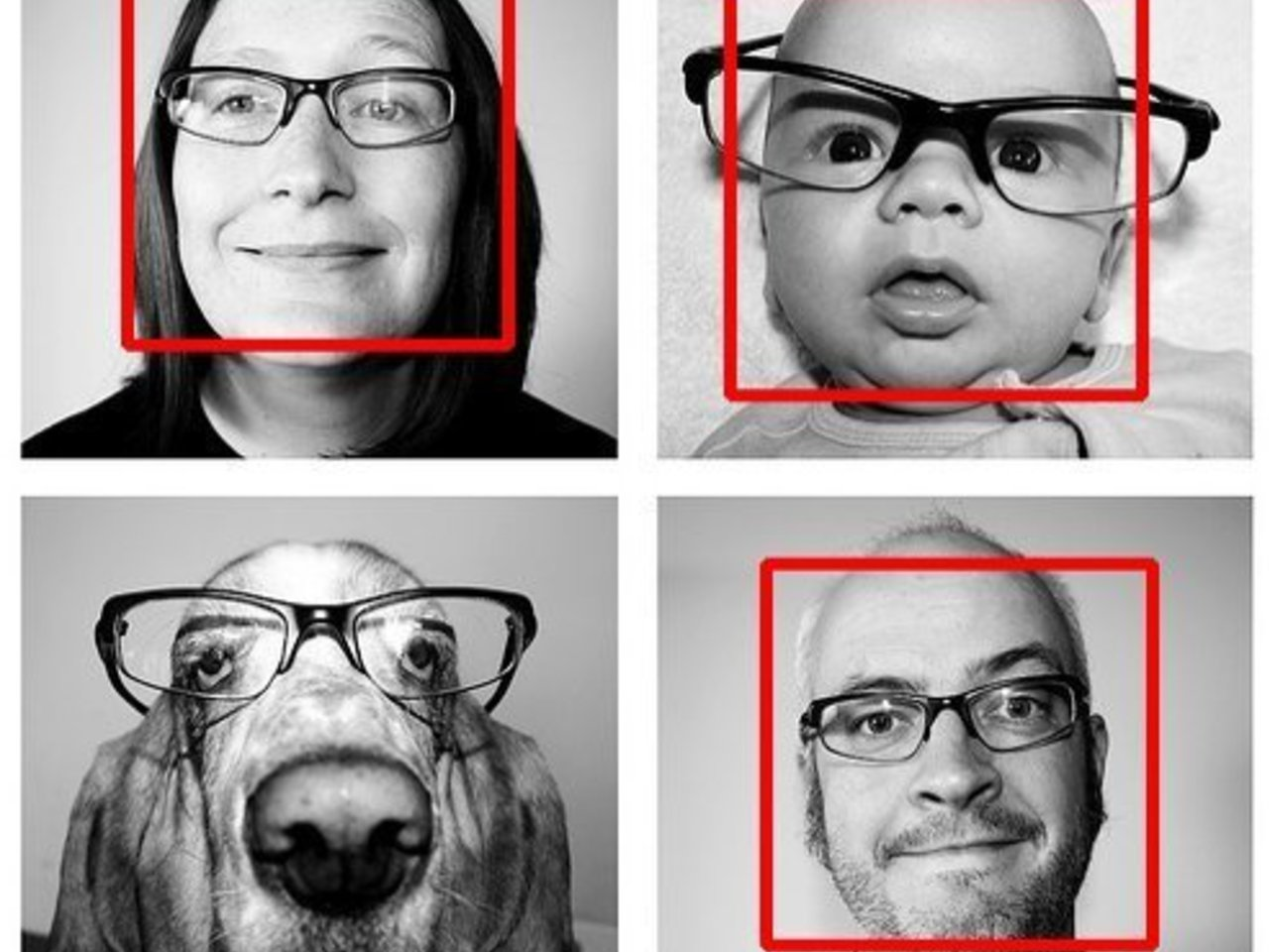 Automatic Facial Expression Recognition