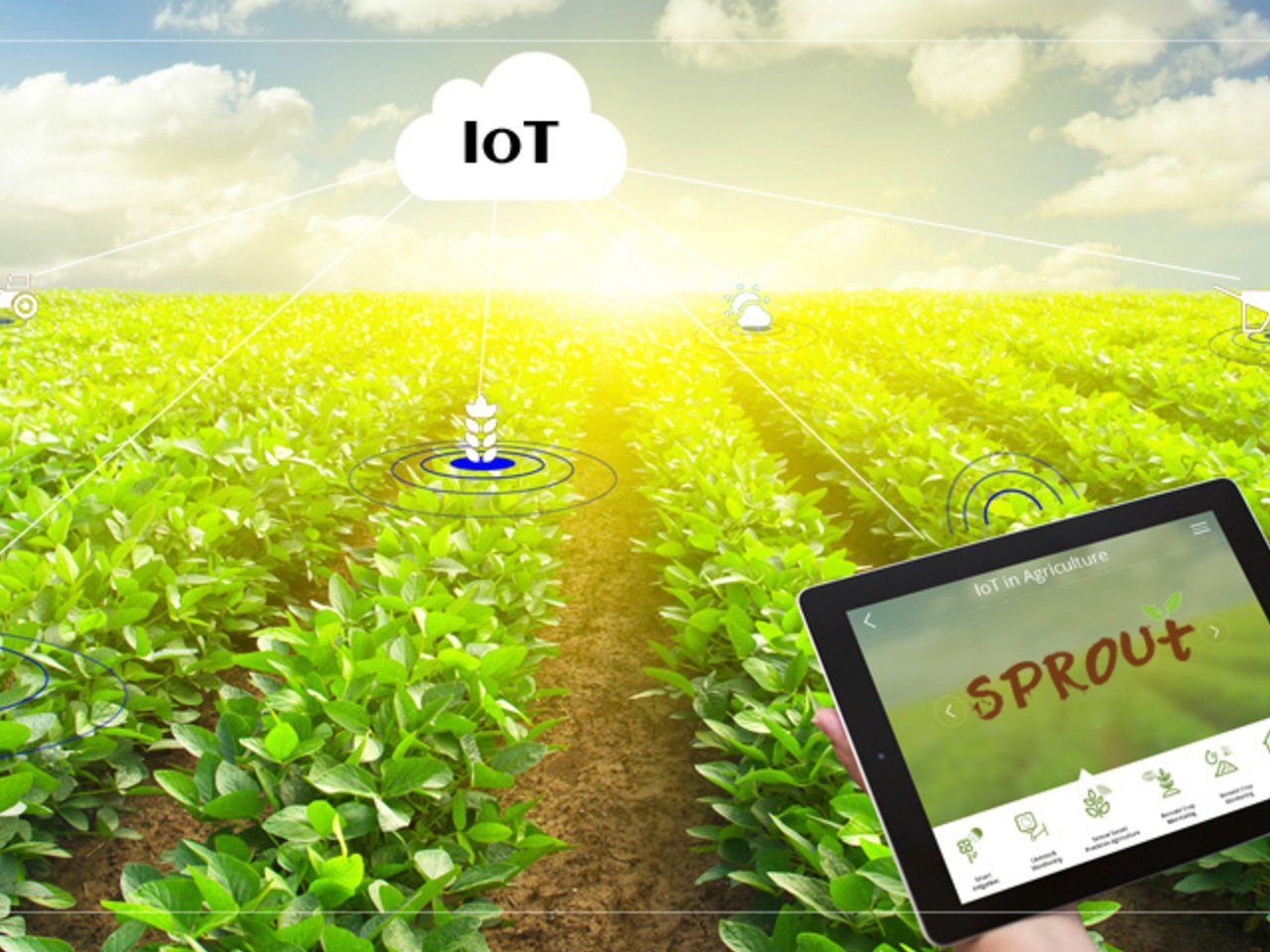 Sprout: An IoT based agriculture monitoring system