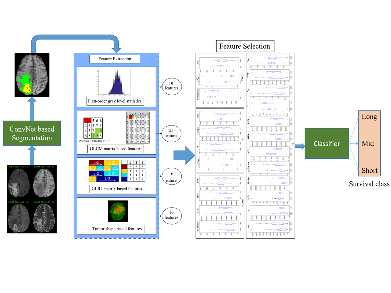 Deep Learning with Radiomics for the Segmentation and Survival