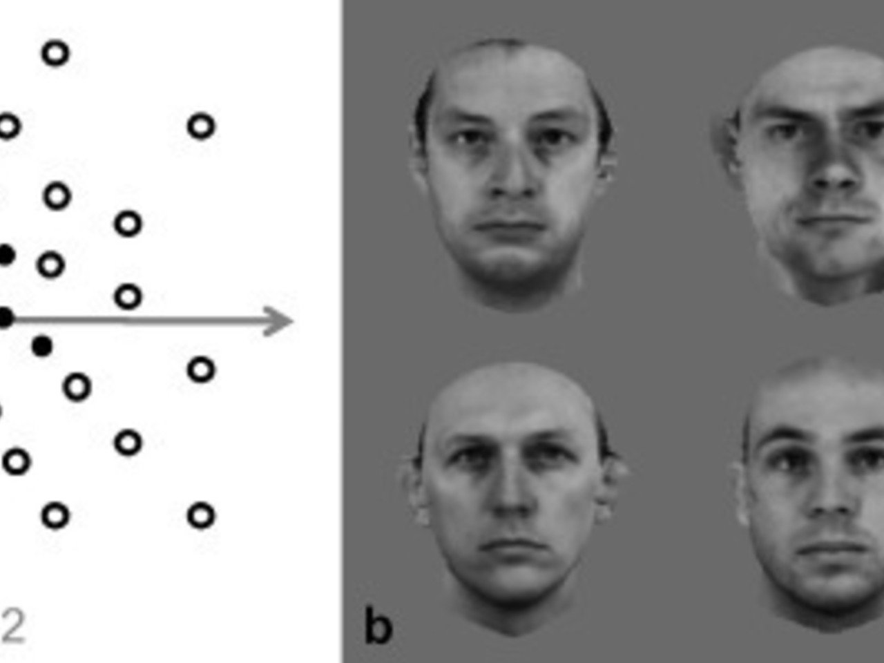 Facial features and Voice correlation research