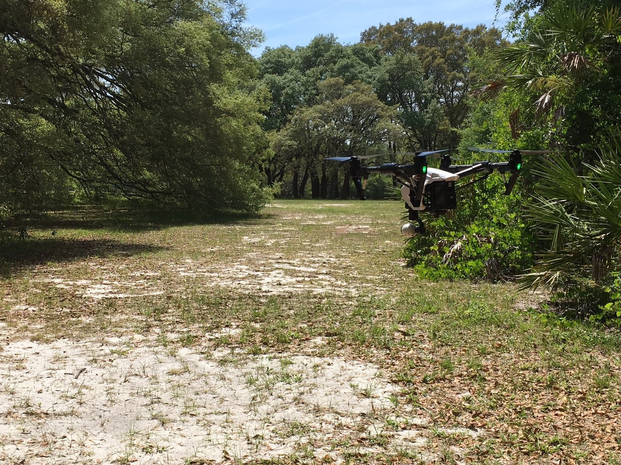 Teaching Drones How to Navigate in Complex Environments