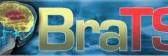Standard brats banner nocaption