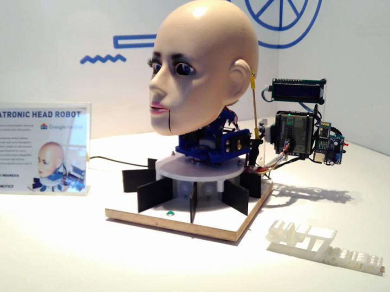 Head Robot | Intel Developer Mesh