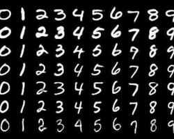 Medium 29158d37 4da1 490b 80d2 c98e8c9287b4