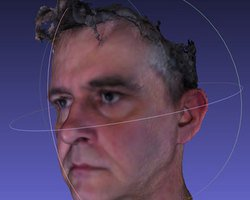 Medium bob duffy 3d head avatar