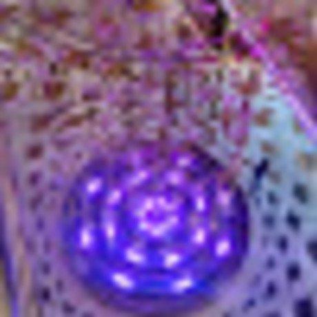 Bigger img 20150208 121922072 hdr