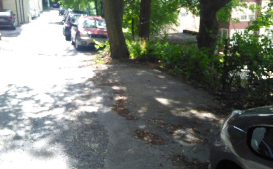 Private Spot close to BC and Cleveland Circle
