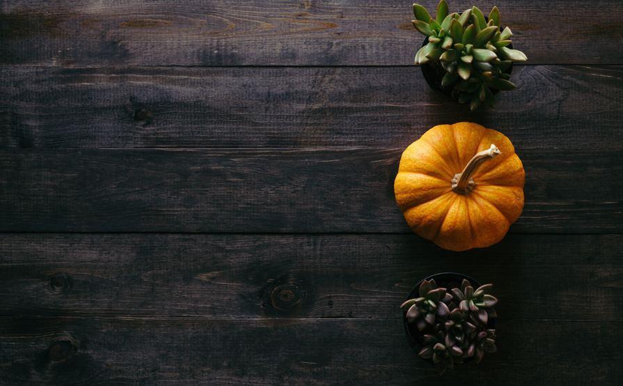 A Homey Pre-Thanksgiving Affair!